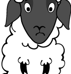 sheep facing front