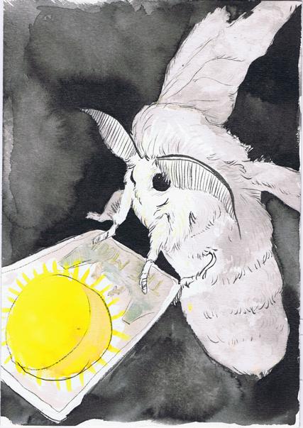 Moth and Tarot Card - Beth Carson www.bethcarson.co.uk