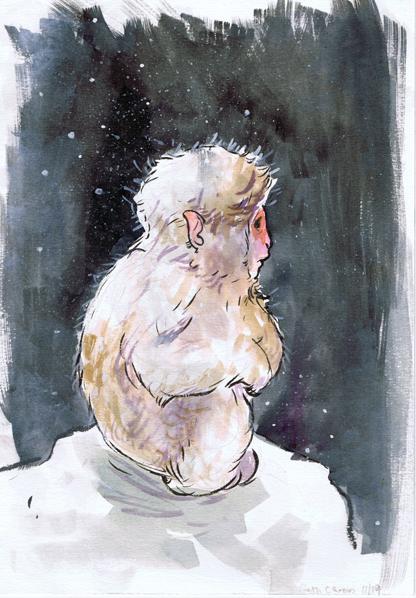 Baby Snow Monkey - Beth Carson www.bethcarson.co.uk
